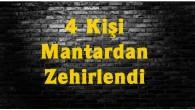 Tosya'da mantardan 4 kişi zehirlendi