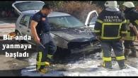 Tosya'da otomobil alevler içinde yandı