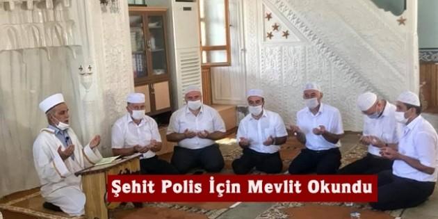 Tosya'da şehit polis için mevlit okutuldu