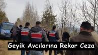 Tosya'da geyik avcıları suçüstü yakalandı