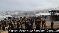 Tosya hayvan pazarında pandemi denetimi