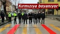 Tosya'da okul geçidine kırmızı çizgi