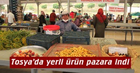 Tosya'da yerli ürün pazara indi
